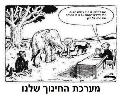 מערכת החינוך שלנו
